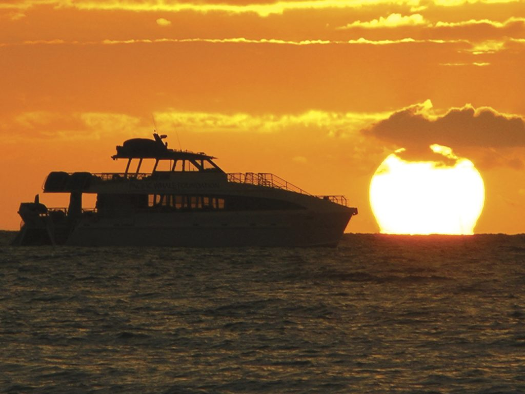 Maui Sunset Cruises: What Makes them Special?