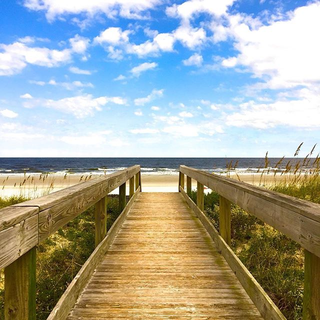 Houses For Rent In Jax Beach: Reasons To Why You Should Visit Jacksonville