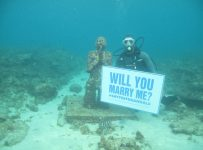 Underwater Wedding Proposal Photos
