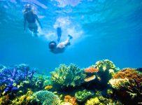 The Great Barrier Reef Australia 1
