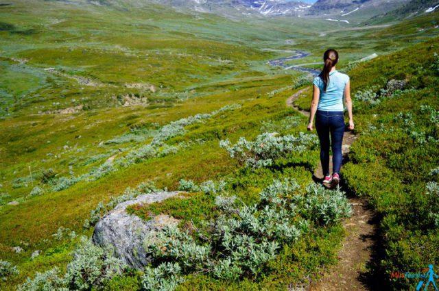 Swedish nature tours