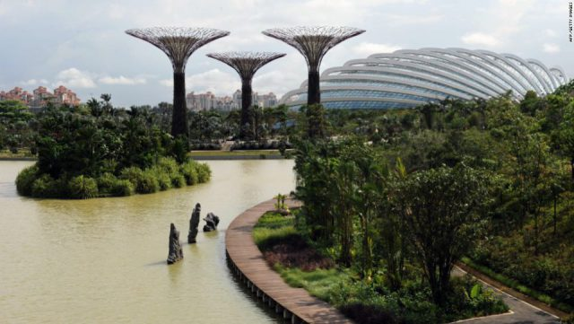 Artificial Forest in Singapore