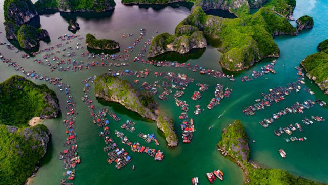Cai Beo fishing village, one of Vietnam's largest floating villages with more than 300 households