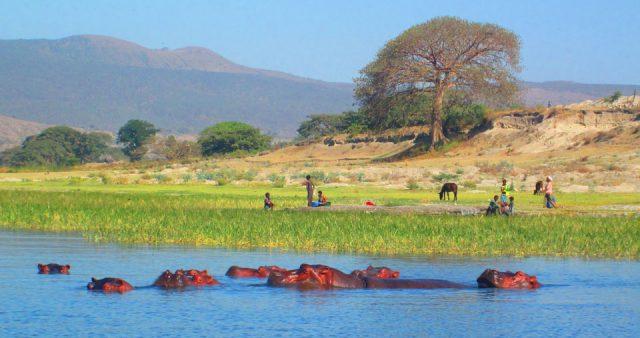Awassa Places to visit in Awassa, Ethiopia